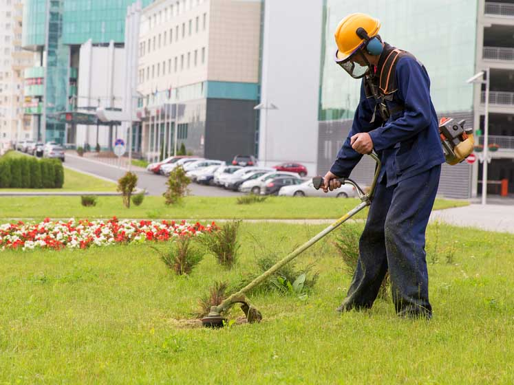 Strimmer Man Landscaping in Dublin