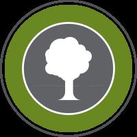 tree surgery icon