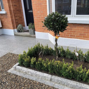 Edging on plant beds